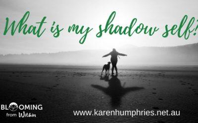 Understanding What Is My Shadow Self!